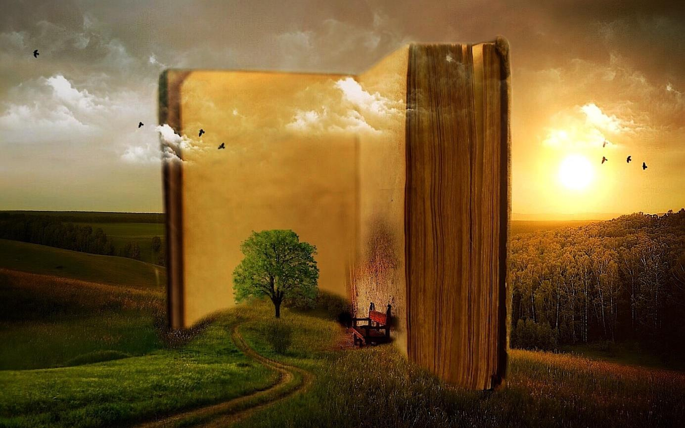 the miracle world of books